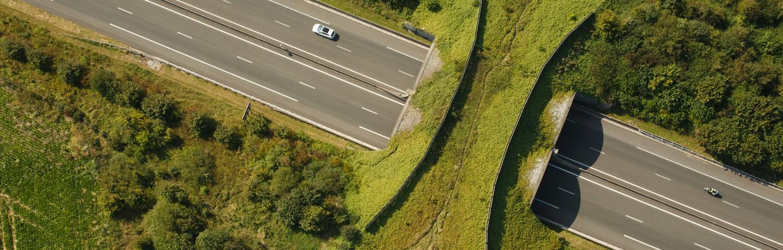 Autoroute A16 : passage faune sur le réseau Sanef